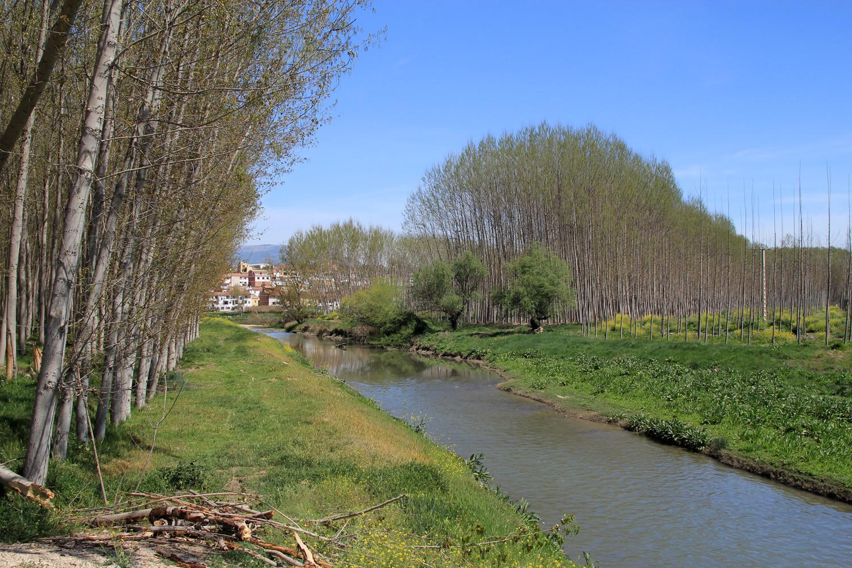 The Genil River near Villanueva Mesia