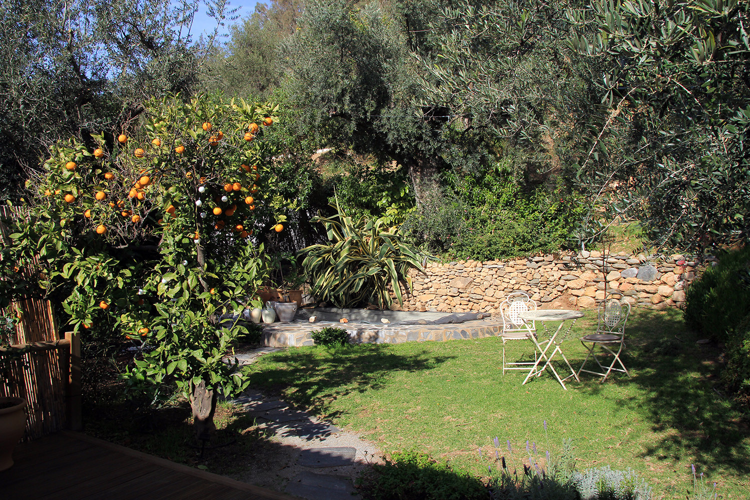 The garden with private swimming pool