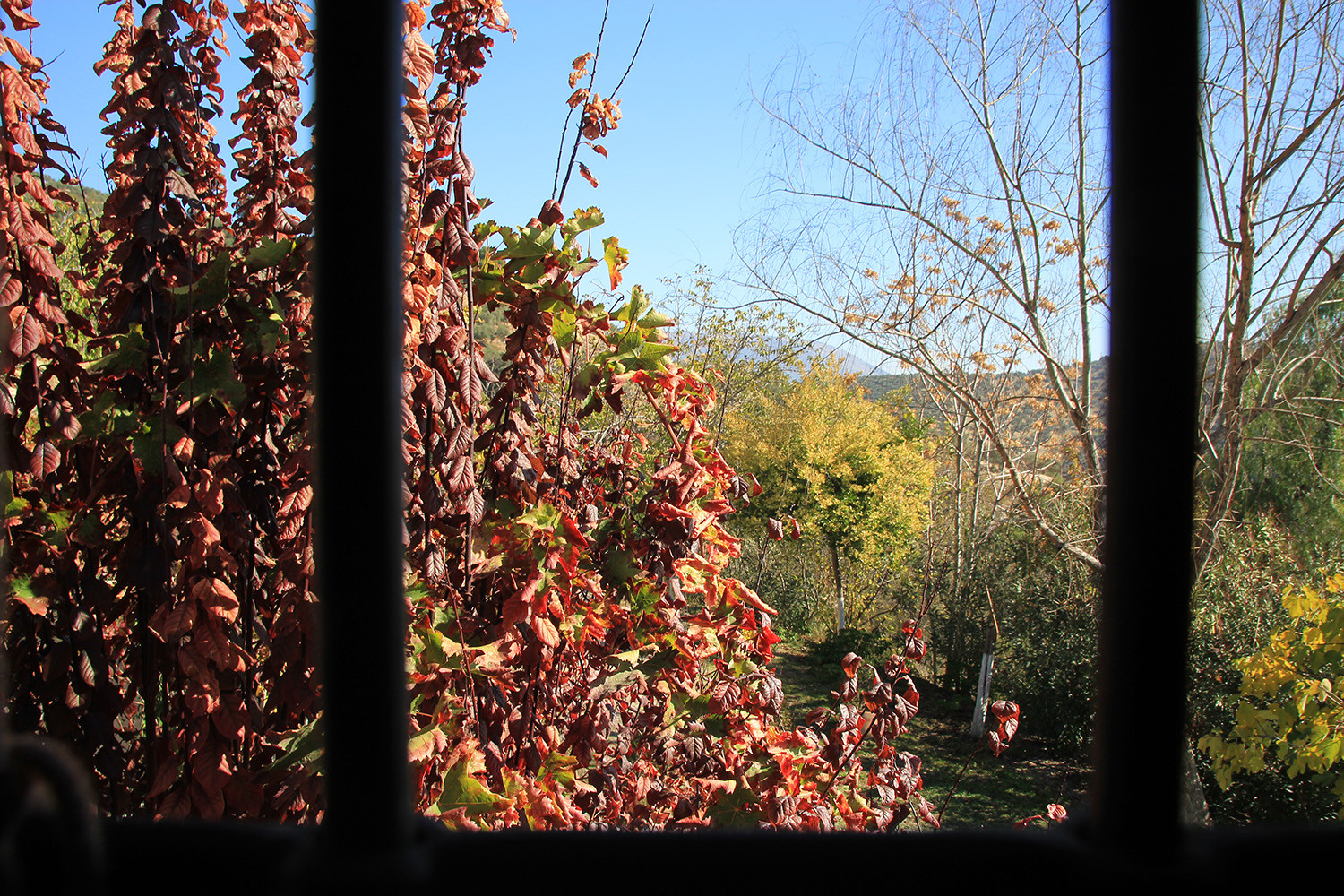 The view from bedroom 1