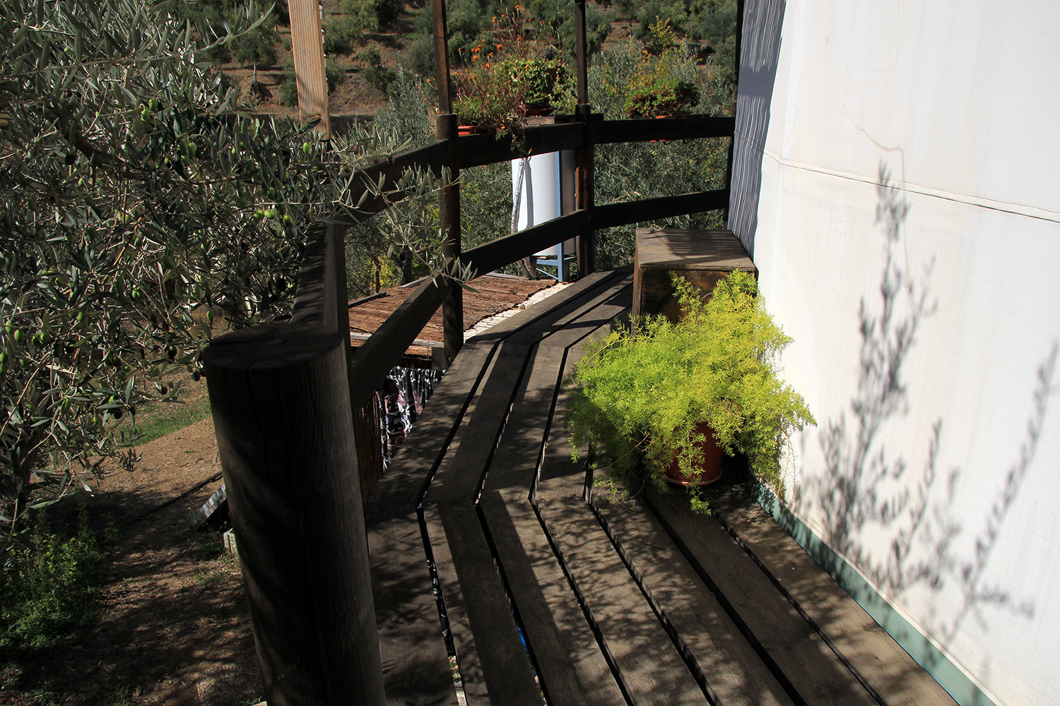 The small wooden path that goes along the yurt