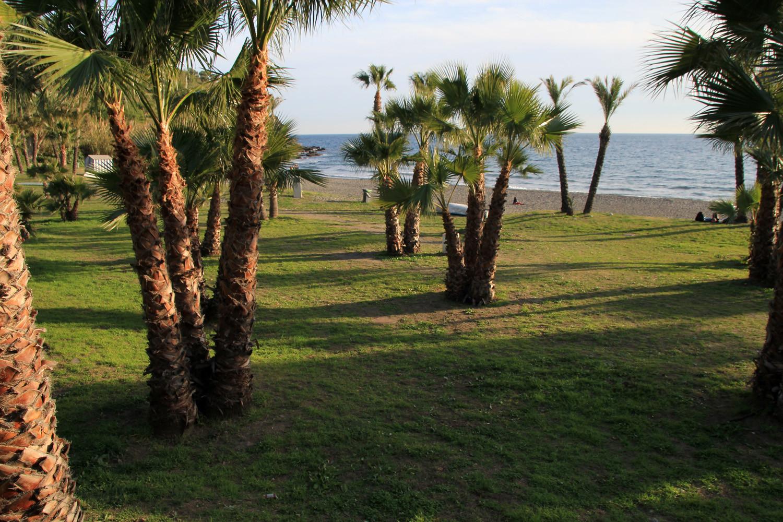 Playa El Calabajio - Almuñecar
