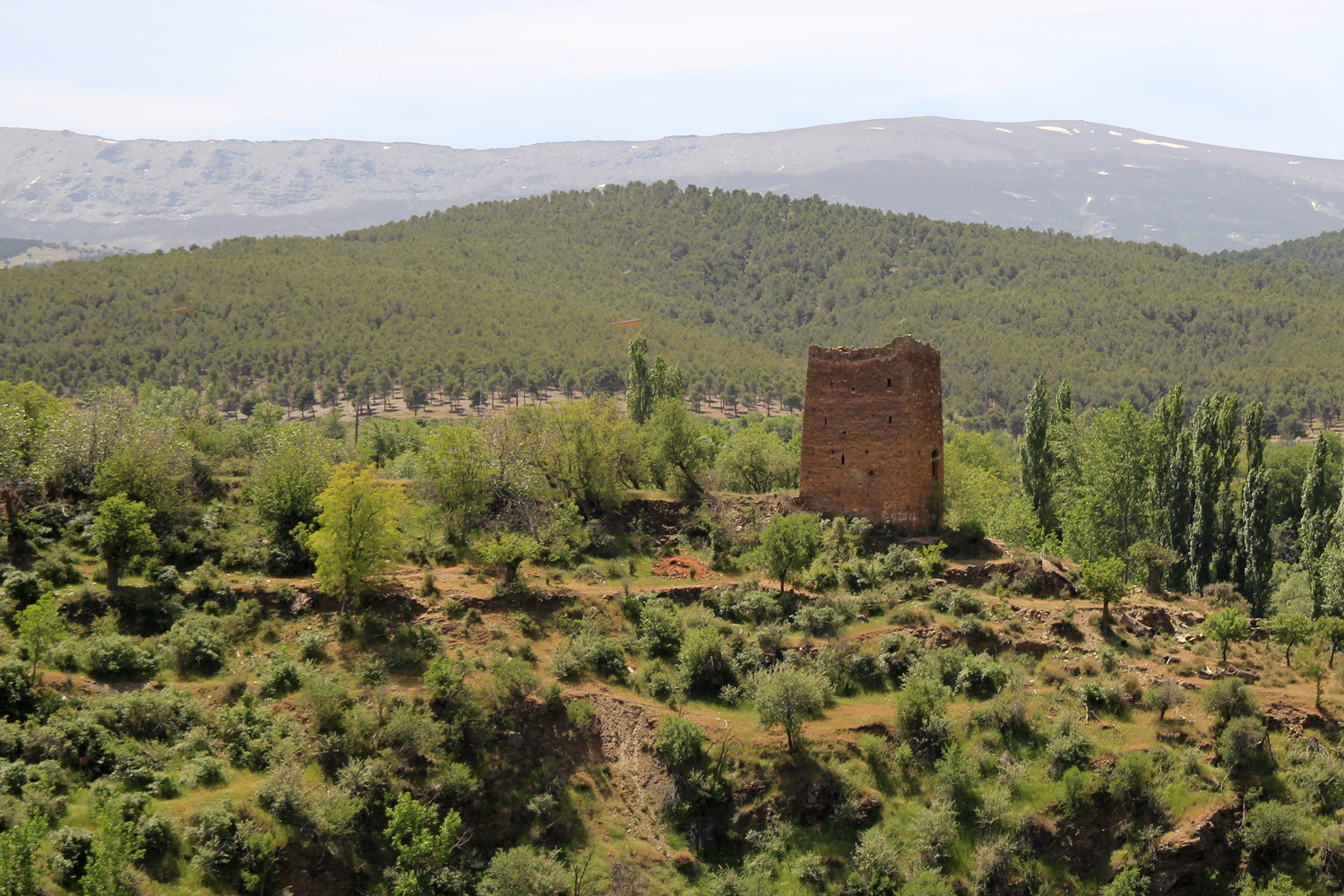 The Arabic Tower of Jérez de Marquesado