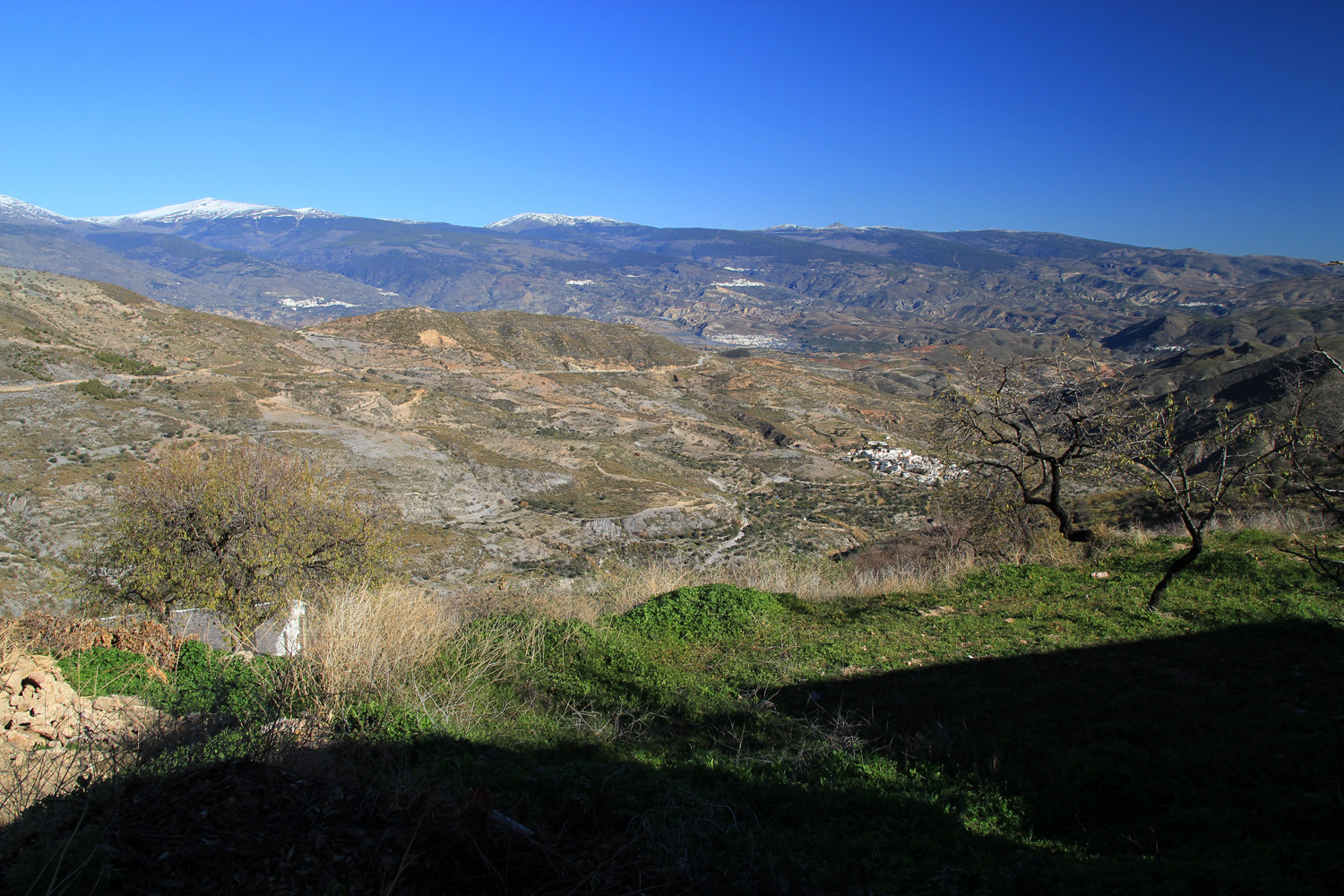 View on the Sierra Nevada from the Contraviesa