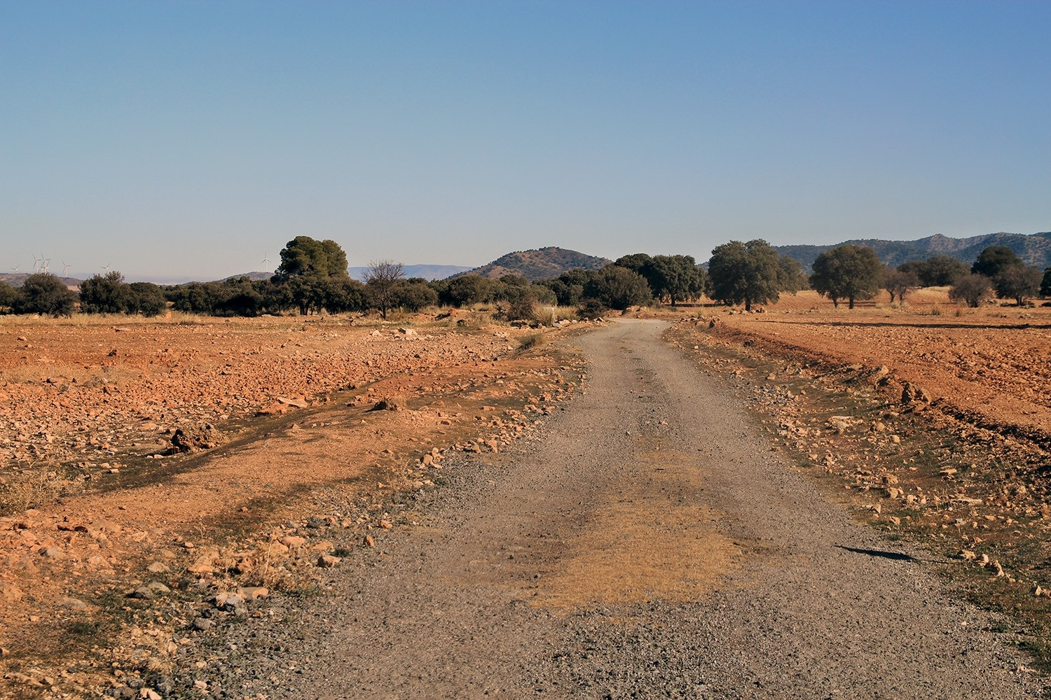 The dirt road (access from the main road)