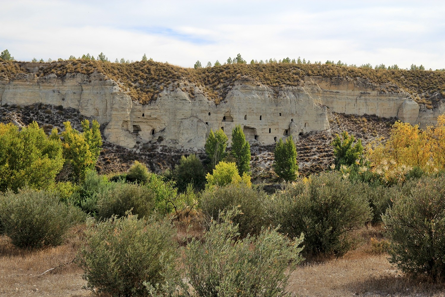 The Historic Cave Houses in Benamaurel