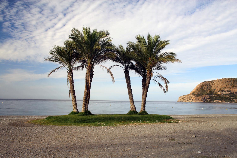 Playa de la Herradura - Almuñecar