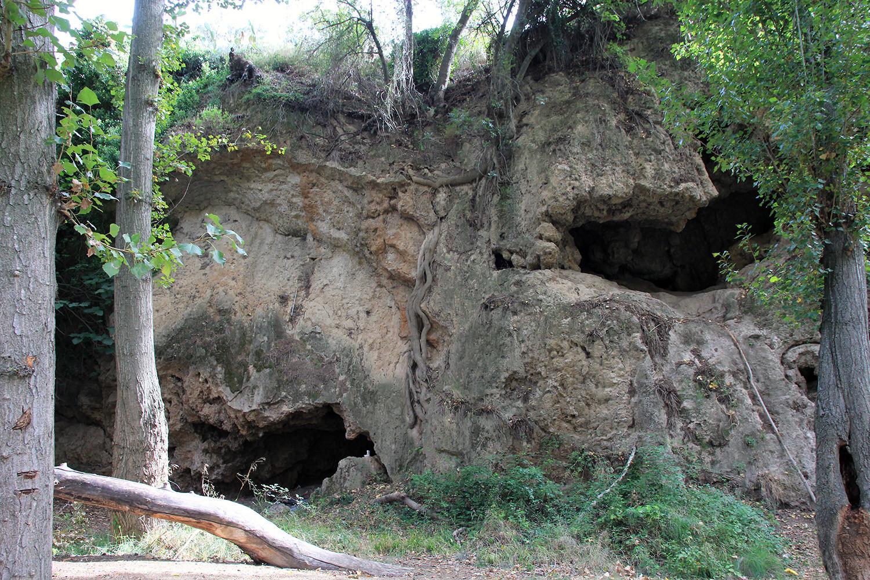 Cave Vacamia
