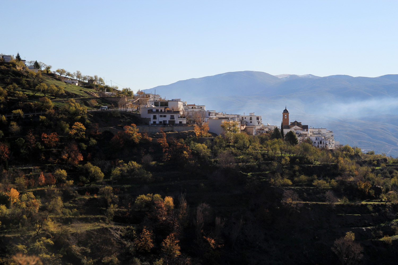 The Village Laroles
