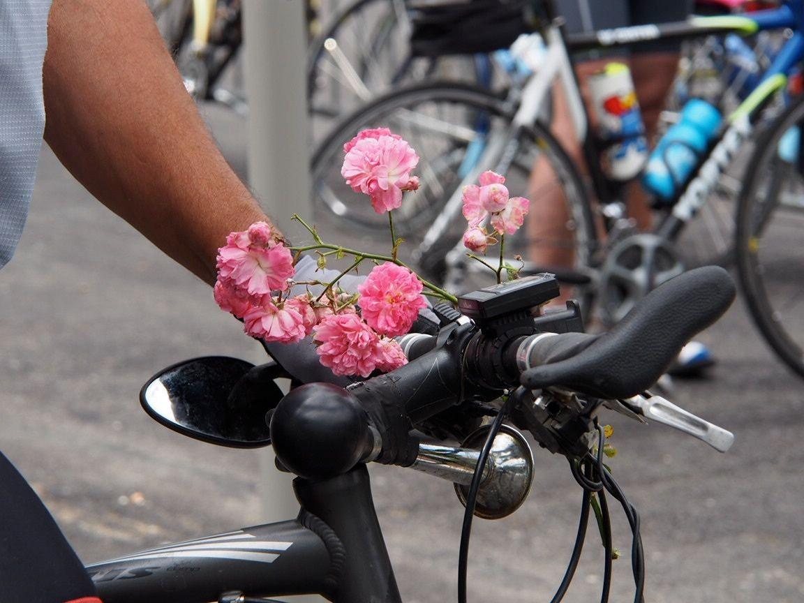 cyclo à fleurs