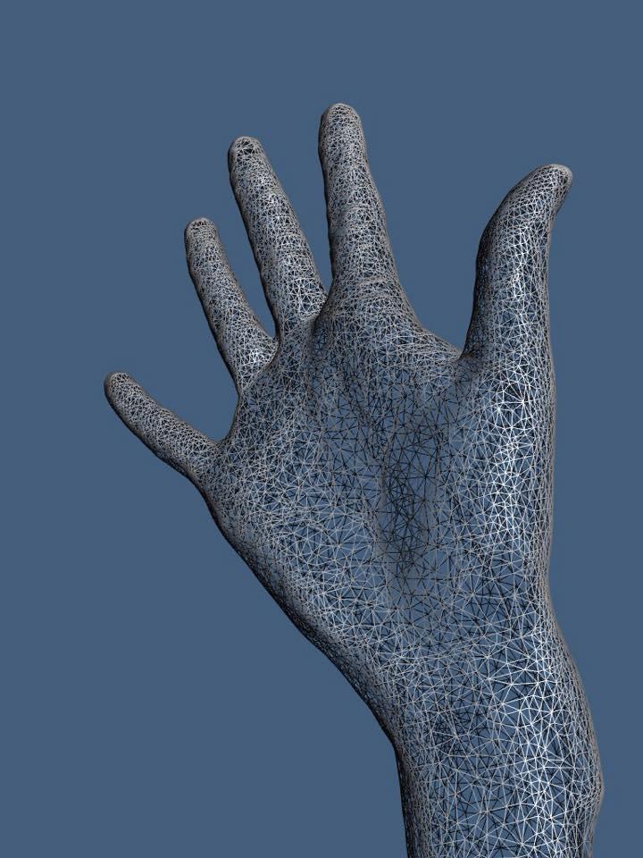 3D-Rohscan einer Hand