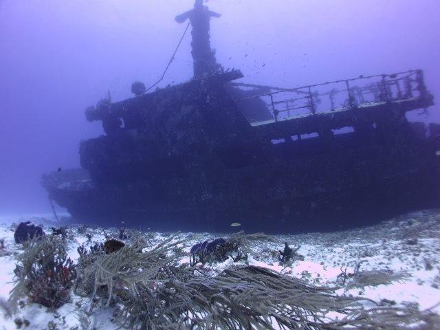 Wreck Dive Playa del Carmen - Albertos Scuba
