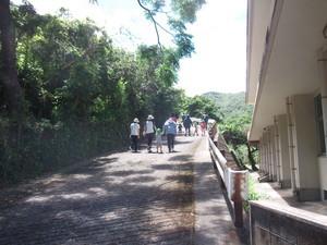 避難先の高台への道