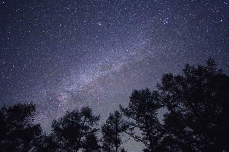 グランピングの庭から星空