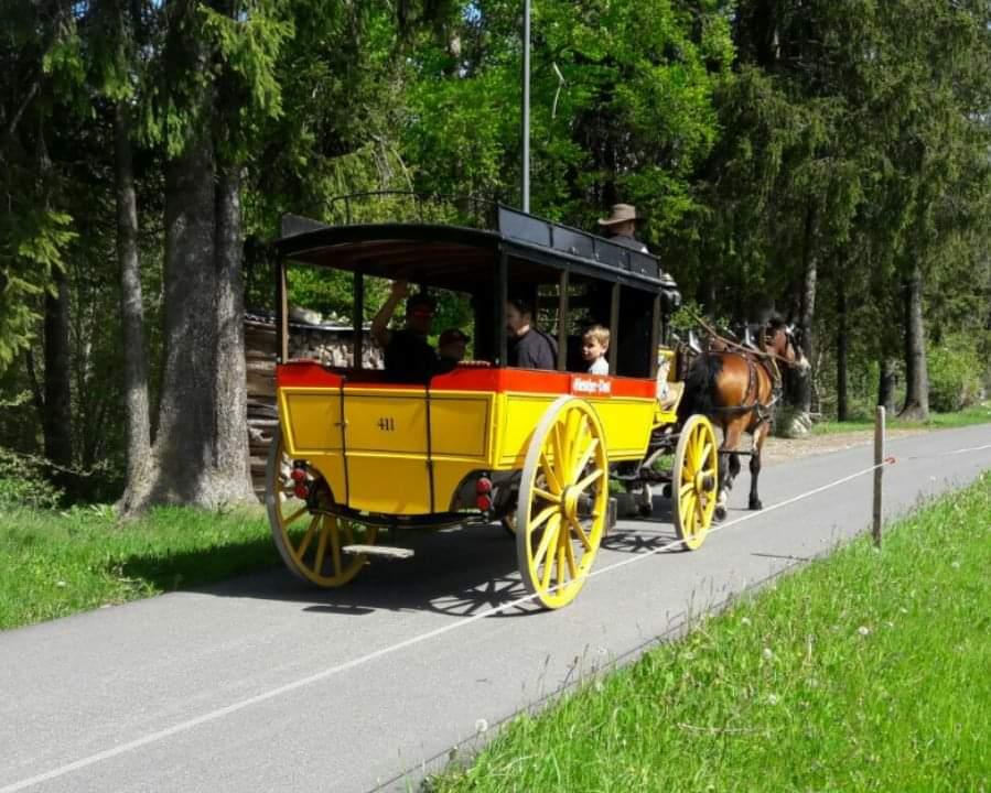 Der Omnibus