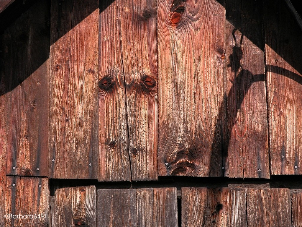 Holzpferd
