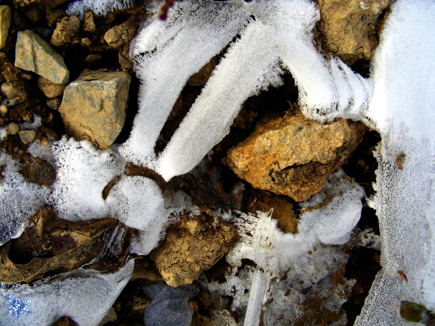 Der Frost schafft undeutbare Phantasiegebilde