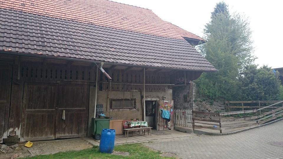 Esthis-Ponyfarm vorne