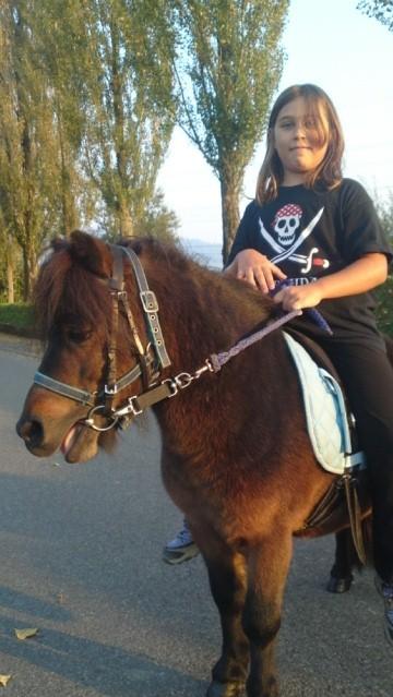 Zyaro zum ersten Mal mit Reiterin