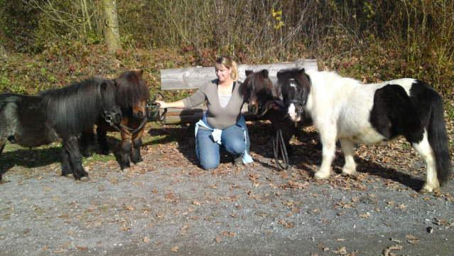 Alle meine Minis (Jado, Zyaro, Lüssy und Kira)