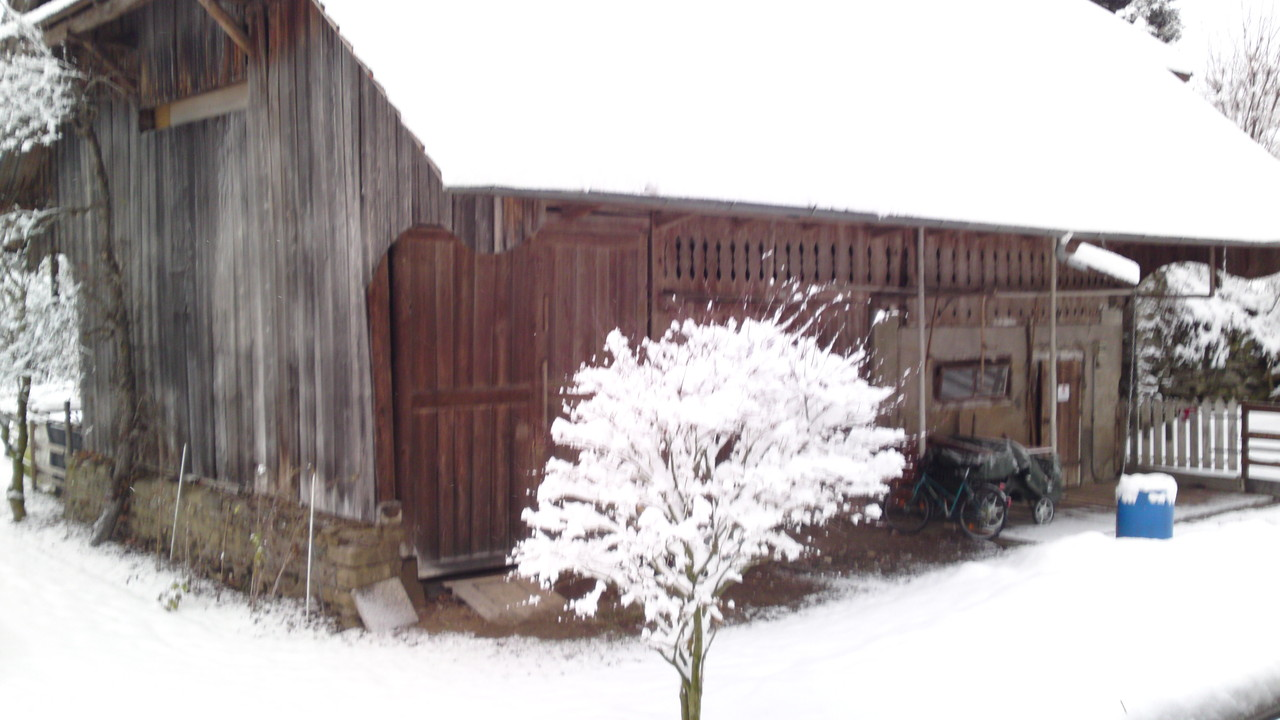 Esthi's-Ponyfarm im Winter