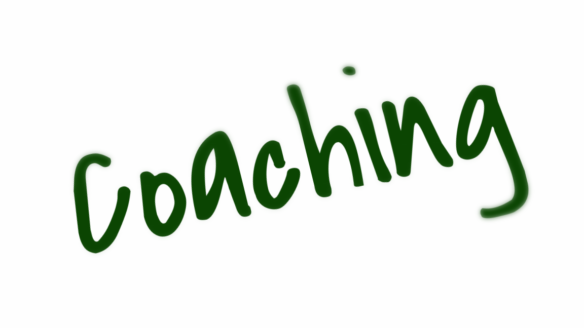Einzelcoaching - Teamcoaching