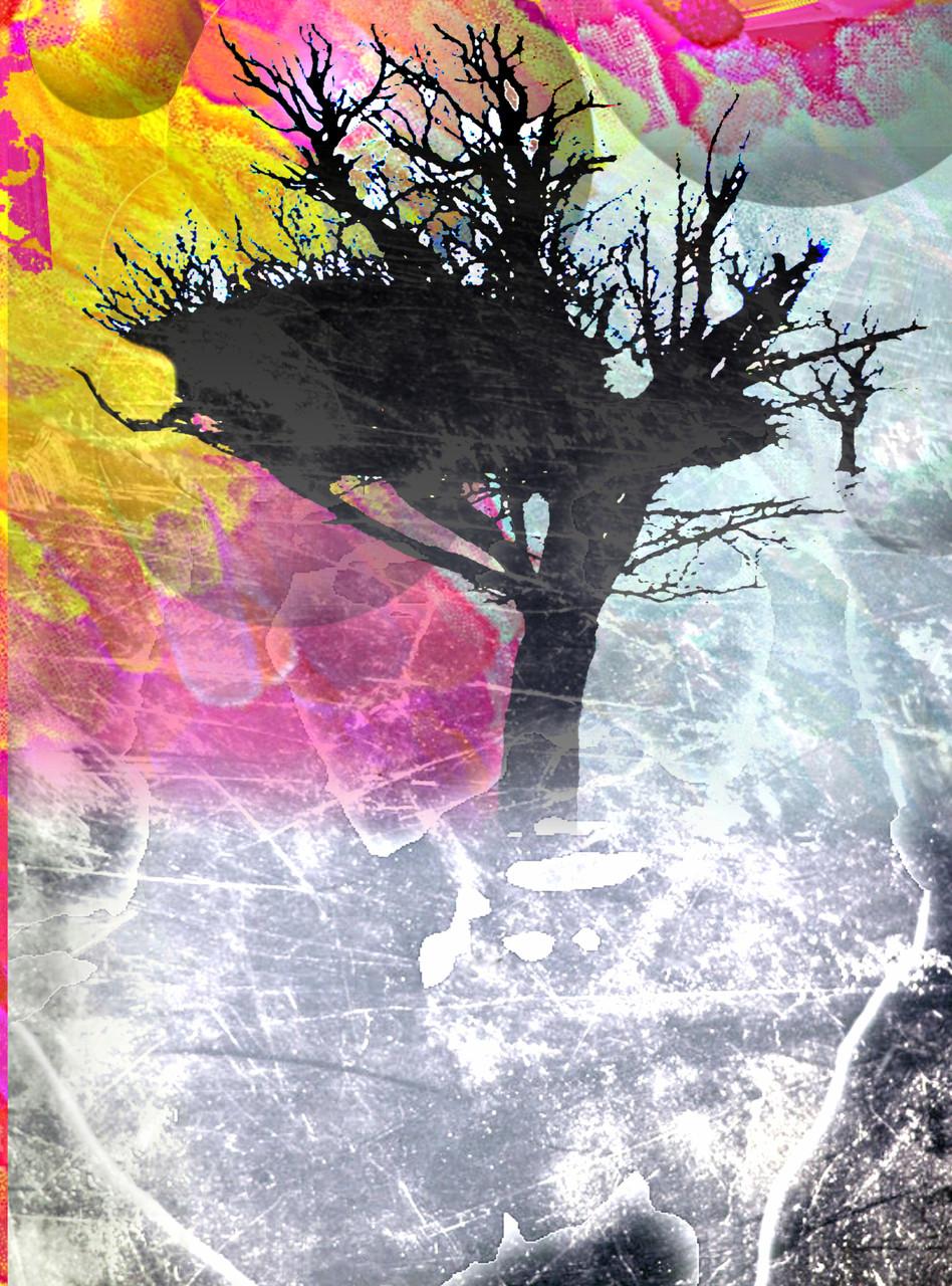 horizonte - verwirrung 2014