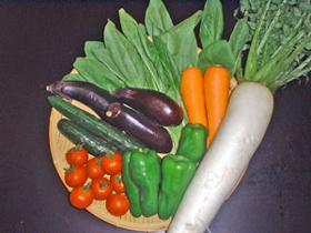 アシドロ®コンポストを使用して栽培したさまざまな野菜