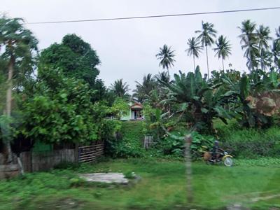 インドネシア・スラウエシ島。<br>広い森林を抜けて現場へ向かいます