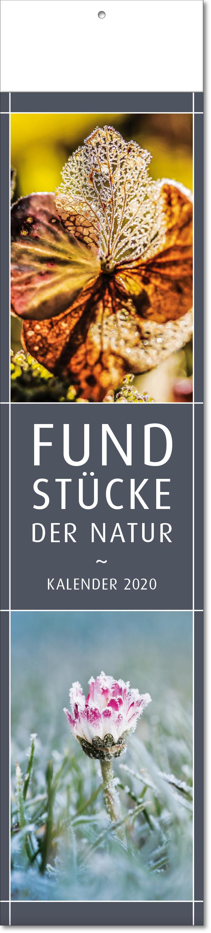 """Bild- Streifenkalender """"Fundstücke der Natur"""" 2019"""