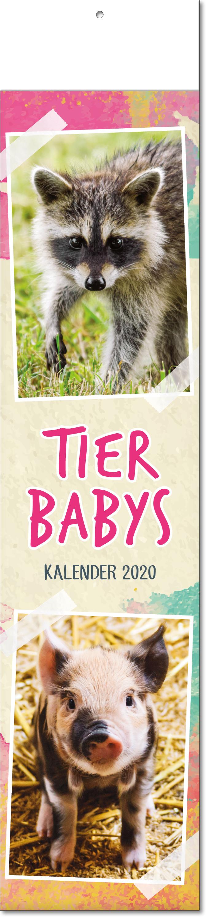 """Bild- Streifenkalender """"Tierbabys"""" 2019"""