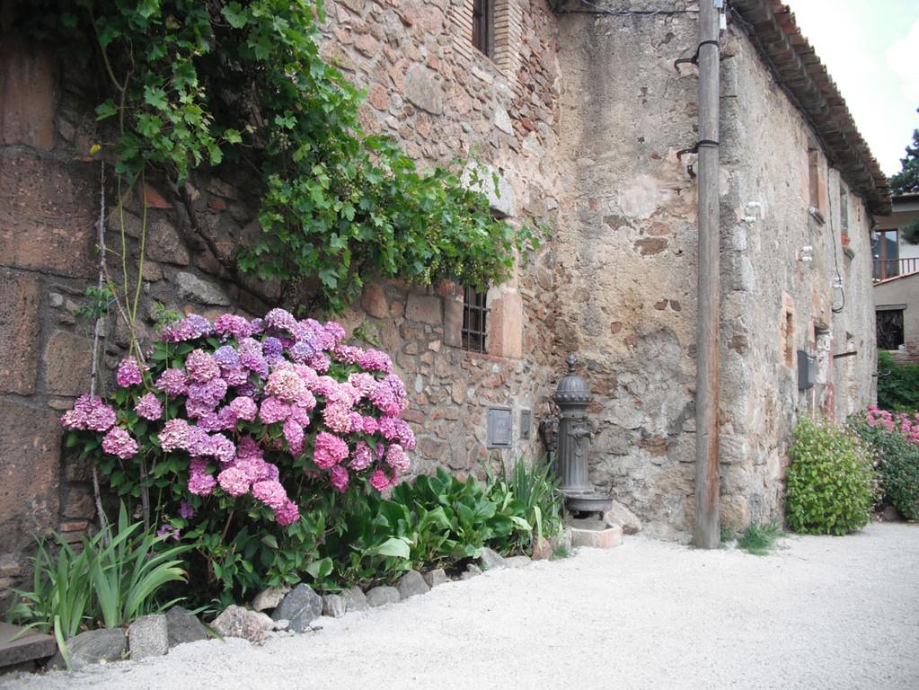 146-Font de Puigtorrat
