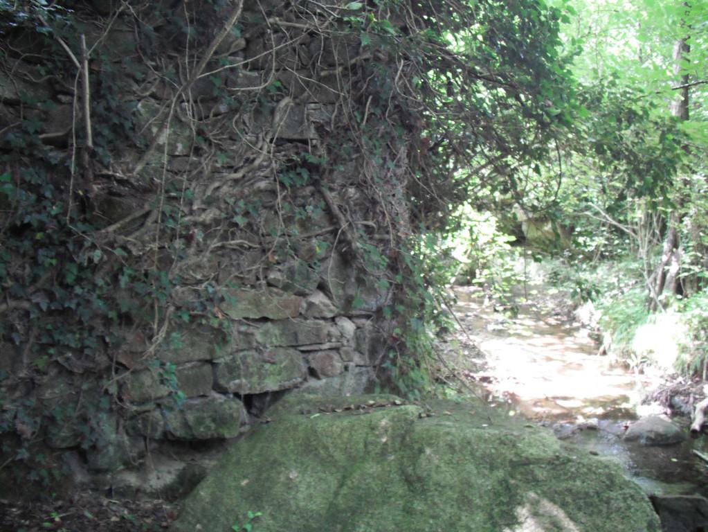 145-Font de Puigdot