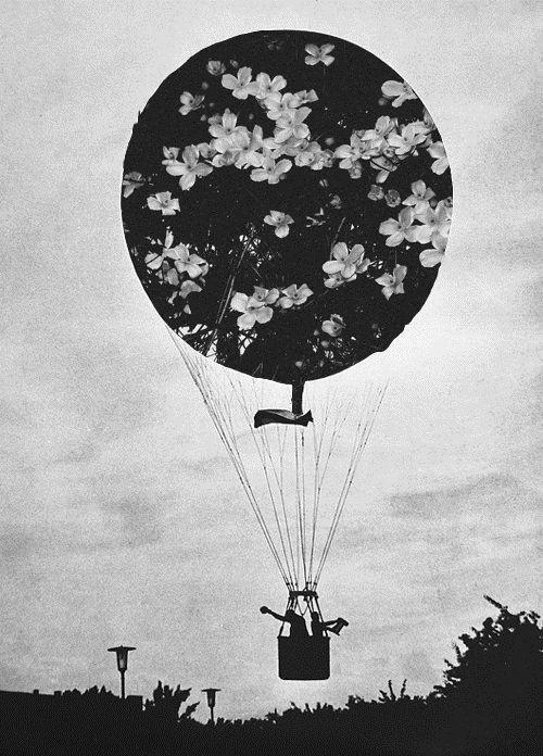 oder eine Ballonfahrt nach Timbuktu?