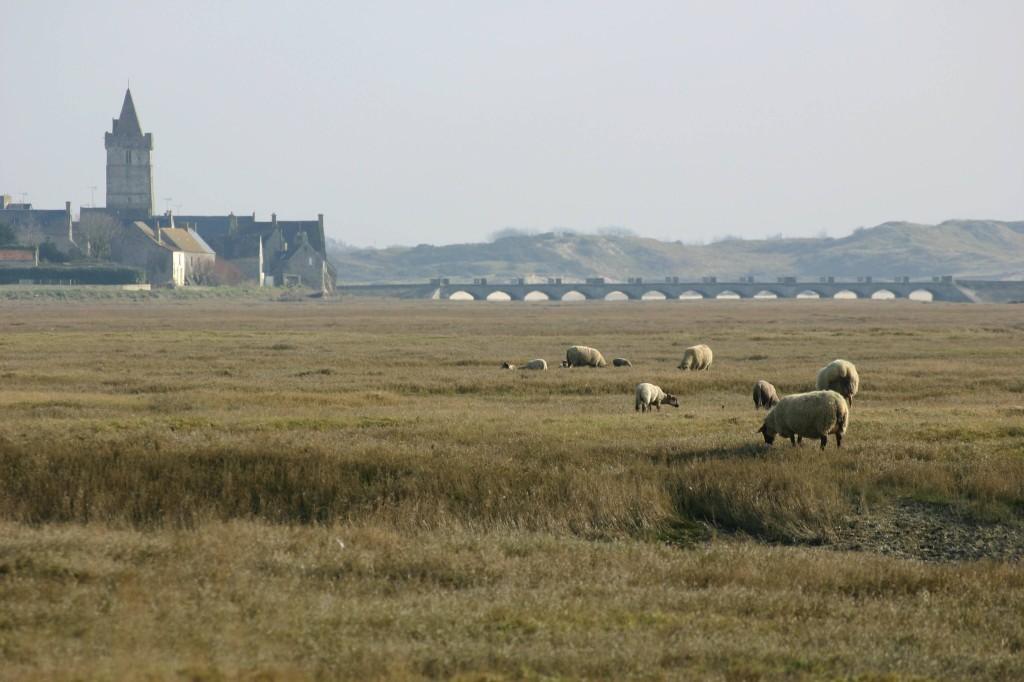 Portbail côte ouest du Cotentin