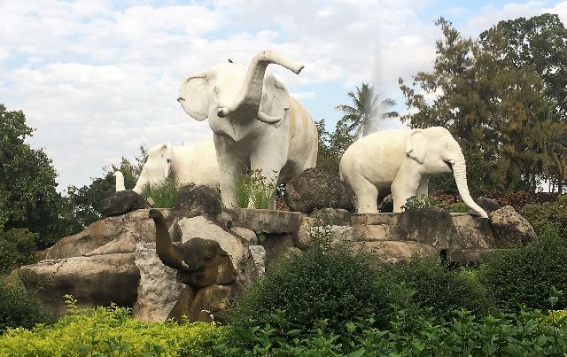 freaky finance, freaky travel, Chiang Mai, Elefanten