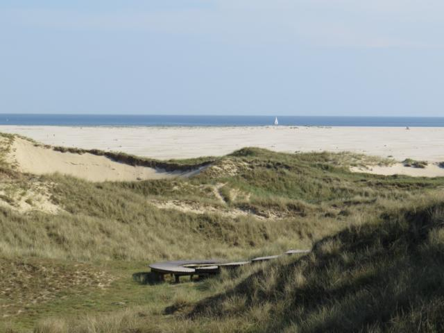 freaky travel, Reisen, TOP 5, Deutschland, Nordsee, Amrum, Insel, Toptipps, Bohlenweg, Gras, Düne, Sand, Strand, Meer, Ufer, Horizont, Segelboot