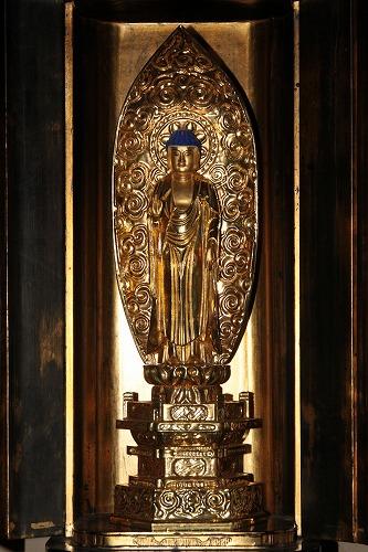 ご本堂に祀られている阿弥陀如来像