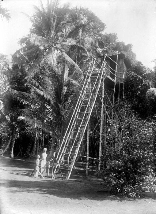 «COLLECTIE TROPENMUSEUM Afweerbeelden staan onderaan de ladder van een hoge hut die dienst doet als afzonderingsruimte voor zieken TMnr 10001037» par Tropenmuseum, part of the National Museum of World Cultures. Sous licence CC BY-SA 3.0 via Wikimedia Co