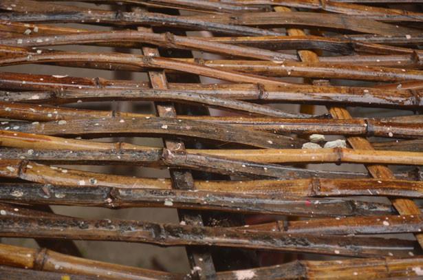 Treillis de bambou par Peter Griffin http://www.publicdomainpictures.net/view-image.php?image=23526&picture=treillis-de-bambou