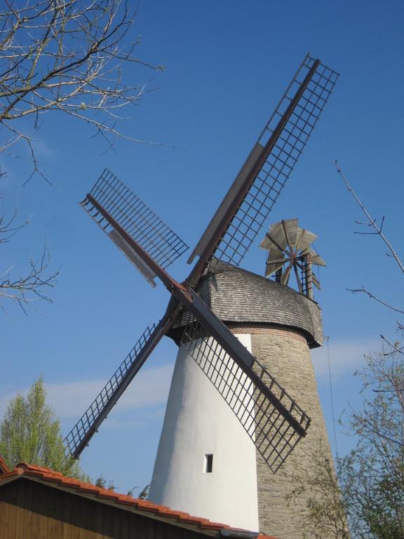 Hummelbecker Mühle in Dützen - Wall-Holländer mit windgängige Segelflügel