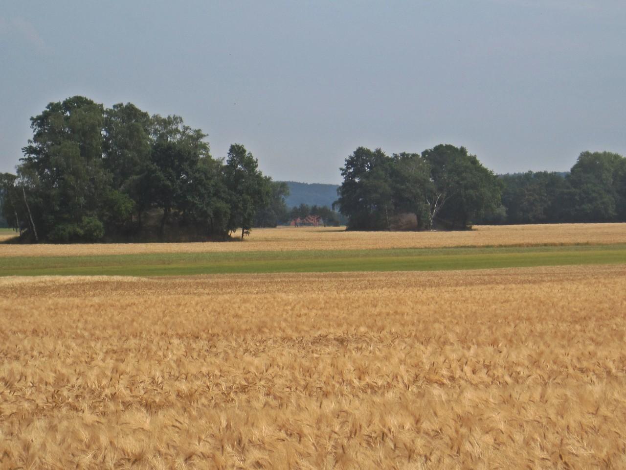 Bergehalden - Kummerhaufen in Gelldorf