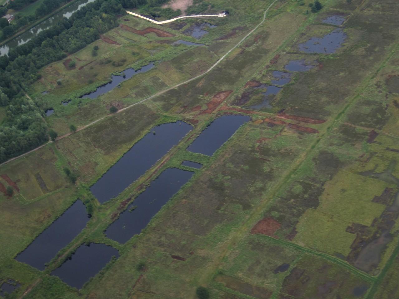 Luftbild - rechteckige Seen entstanden durch Bademoorabbau