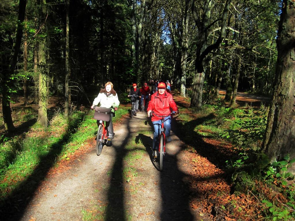 auf dem Fürstenweg durch den Schaumburger Wald