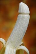 Der beschnittene Penis