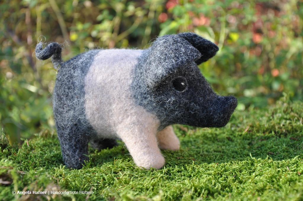 Hausschwein aus Filz