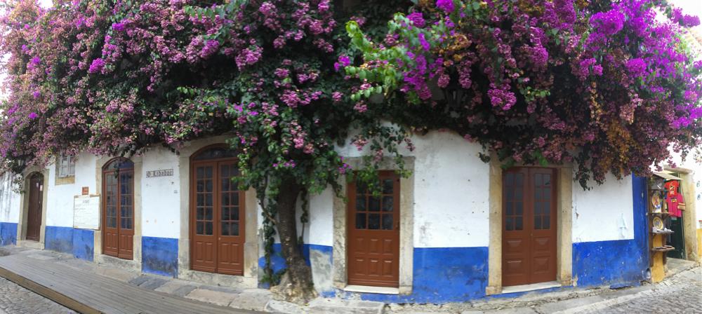 Übrigens: Die blaue Wandfarbe färbt ab. Stell dich also am besten nicht mit heller Kleidung an die Wand.