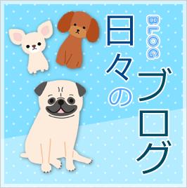 ゆめまるHAPPY隊 日々のブログ