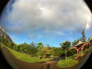 ドームで朝虹