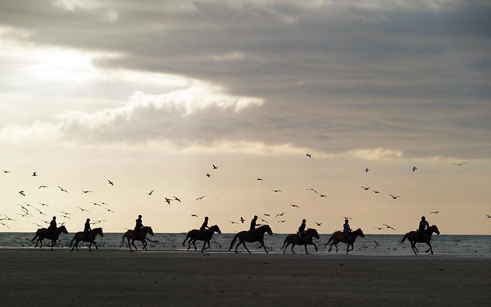 des cavaliers