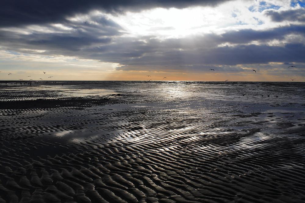 La baie d'Authie au coucher du soleil
